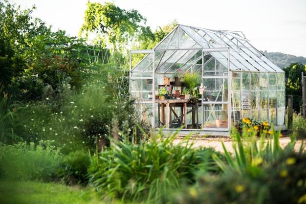 Folija za rastlinjake se ponaša s številnimi prednostmi