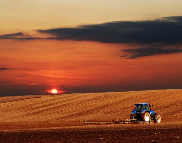 Odlična izkušnja pri delu na kmetiji